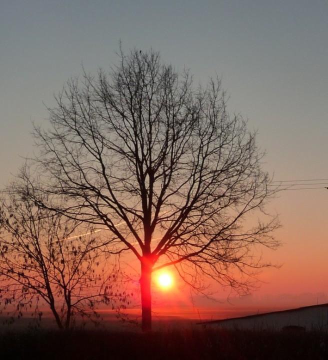 Sonne-03